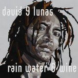 David 9 Lunas - Rain Water and Wine -