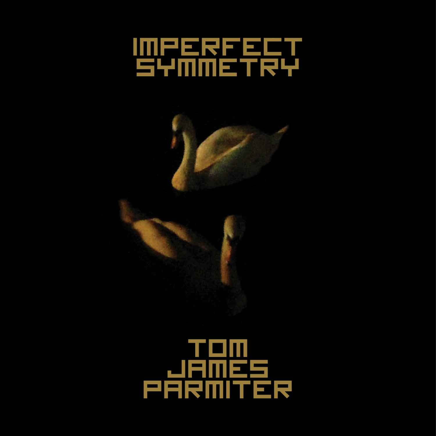 Tom James Parminter - Imperfect Symmetry -
