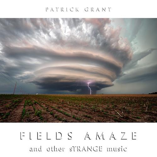 Patrick Grant - Fields Amaze And Other Strange Music