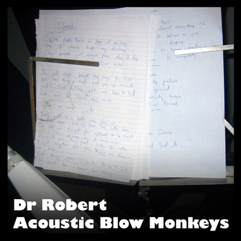 Dr Robert - Acoustic Blow Monkeys -