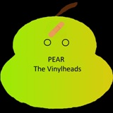 The-Vinylheads