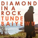 Tunde Baiyewu - Diamond in a Rock -