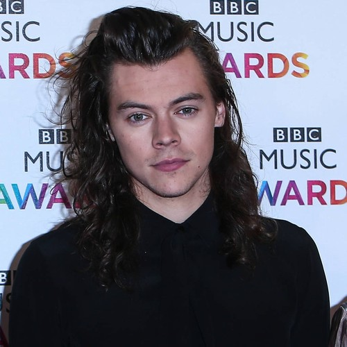 Harry Styles laughs off Han Solo audition rumours