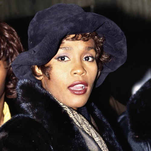 http://www.music-news.com/news/UK/107503/Whitney-Houston-partied-hard-long-before-meeting-Bobby-Brown