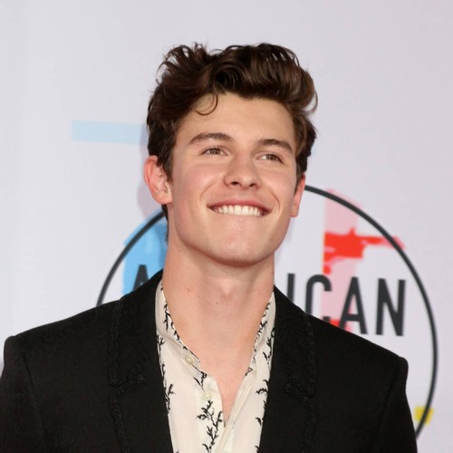 Shawn Mendes Has Taylor Swift To Thank For Perfect Stage Shows