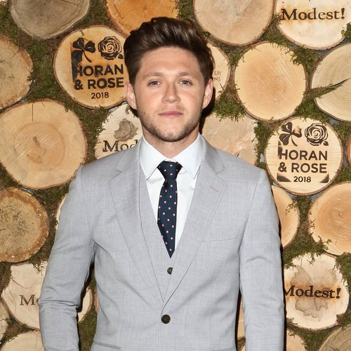 Niall Horan And Hailee Steinfeld Split - Report
