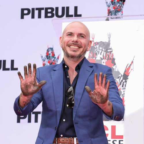 Pitbull Sets Goal To Teach 20,000 Kids In 2019