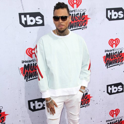 Chris Brown Launches Defamation Lawsuit Against Rape Accuser