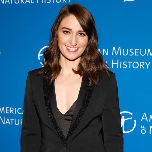 Sara Bareilles: 'i Was Tired Of The Pop Cycle' - Music News
