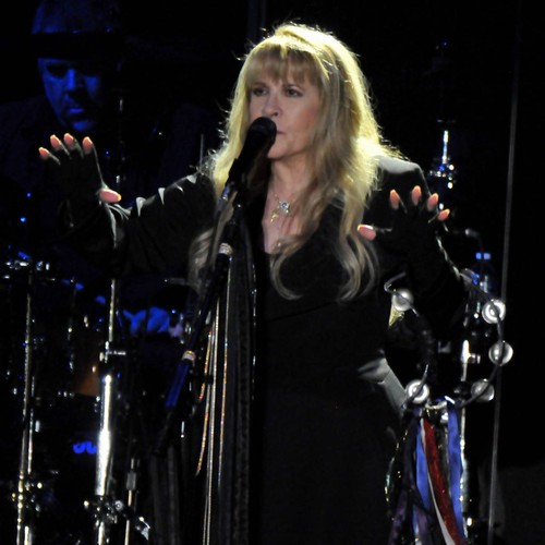 Stevie Nicks Dedicates Fleetwood Mac Song To Kit Harington