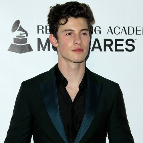Shawn Mendes Slams 'hurtful' Rumours About His Sexuality