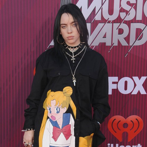 Billie Eilish Urges Fans Not To Grope Her After Meet And Greet Incident