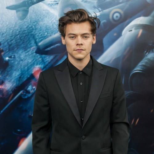 Harry Styles's Homeless Stalker Found Guilty