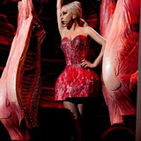 Lady-Gaga-slammed-by-PETA