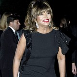 Tina-Turner-to-marry-this-month
