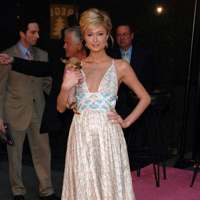 Paris-Hilton:-Im-down-with-50-Shades